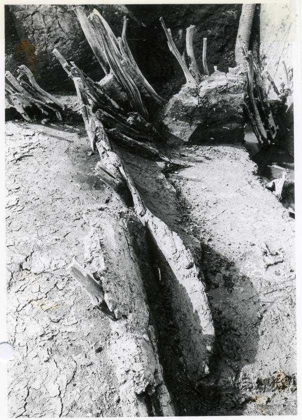 Het fragment van een boomstamkano zoals die gevonden werd tijdens de opgraving. Foto gemaakt door ROB en uit de collectie van het Noordelijk Archeologisch Depot.